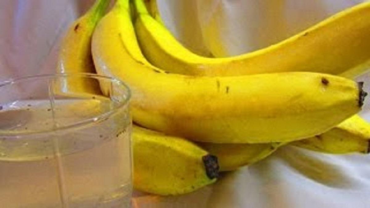 Cojile de banana, beneficii si intrebuintari pentru sanatate si frumusete